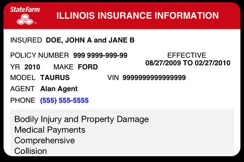 Example of a Vehicle Insurance Card